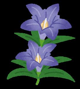 flower_rindou